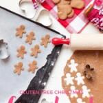 Ginger Bread Men | Gluten Free Baking | Refined Sugar Free | Christmas