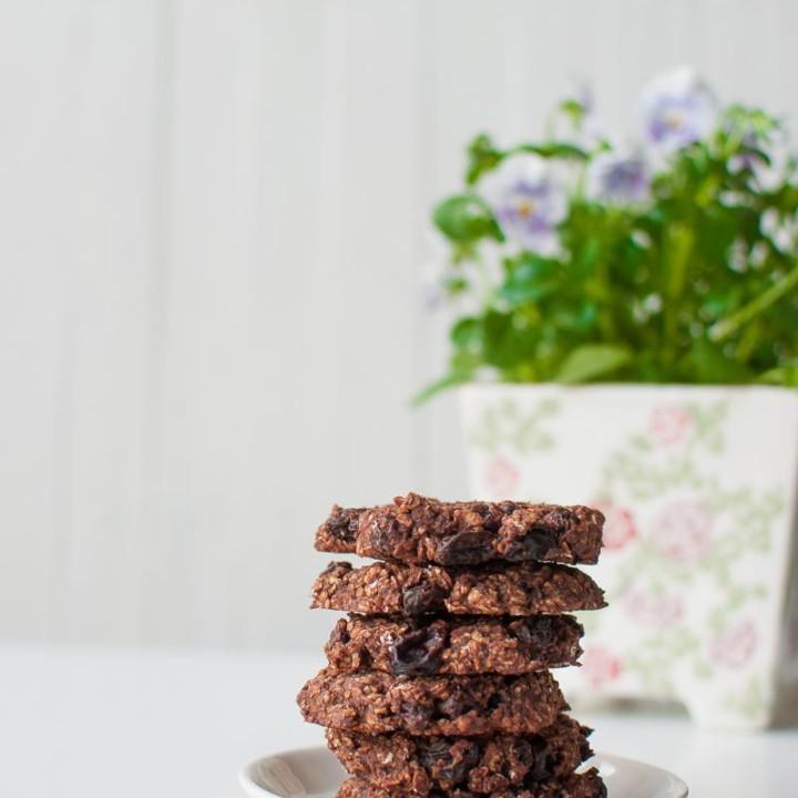 Vegan chocolate raisin cookies. Gluten free - no added sugar.