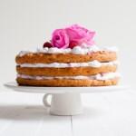 Omenavadelmakakku | Gluteeniton kakku | Vegaaninen täytekakku | Sokeriton leivonta