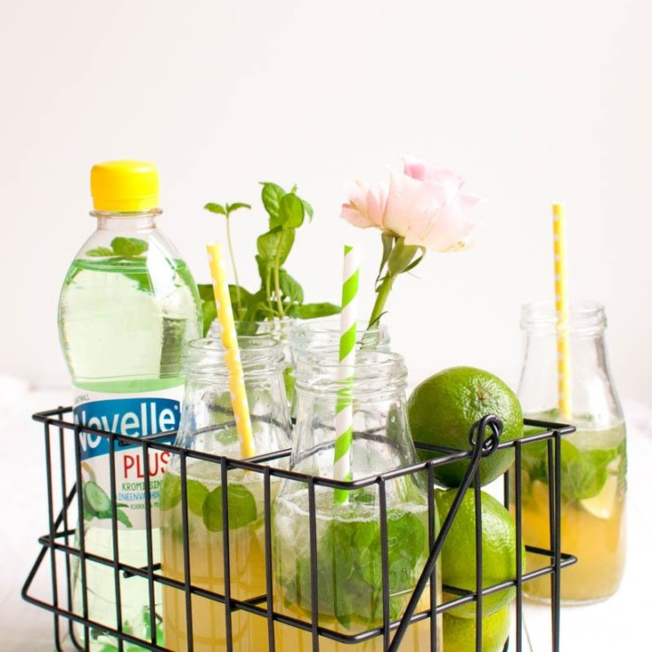 Mojito Mocktail | Drinkki | Juoma | Kivennäisvesi | Hartwall Novelle Plus