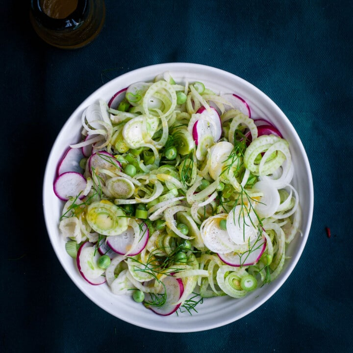 Flatlay photo of fennel and radish salad with lemon honey dressing.